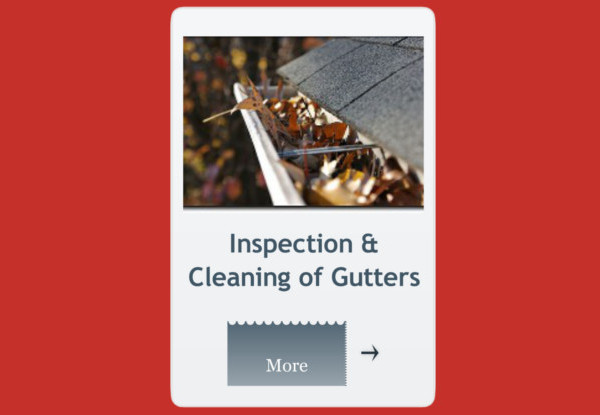 inspection & cleaning of gutters