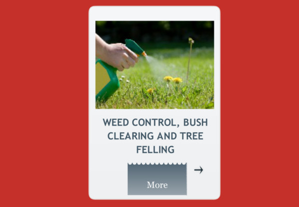 weed control, bush clearing and tree felling